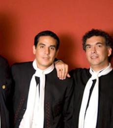 Contratar Los Ceibales (011-4740-4843) O Al (011-2055-4218)