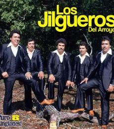 Contratar Los Jilgueros (011-4740-4843) O Al (011-2055-4218)