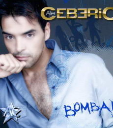 Contratar Alejandro Ceberio (011-4740-4843) O Al (011-2055-4218)