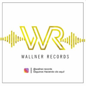 instagram wallner records